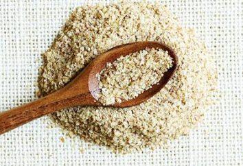 L'utilisation de germe de blé et son utilisation