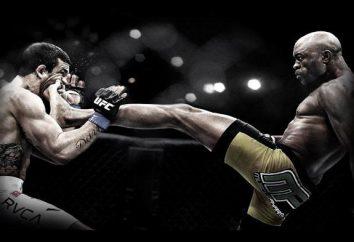 MMA-Kämpfer Bewertung (Top 3)