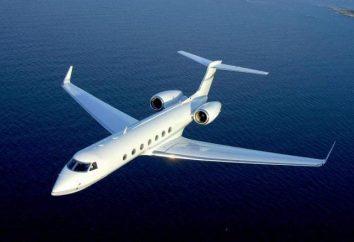 Jako producent samolotów dzień w Rosji?