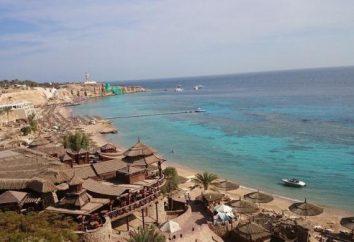 Hotel de 4 * Sharm Cliff Resort (Egipto / Sharm El Sheikh): fotos y comentarios