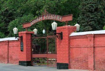 Le remarquable cimetière Don