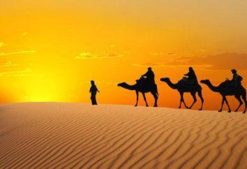 documentari interessanti su Egitto