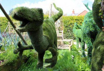 topiary: paso a paso cómo crear formas. topiary