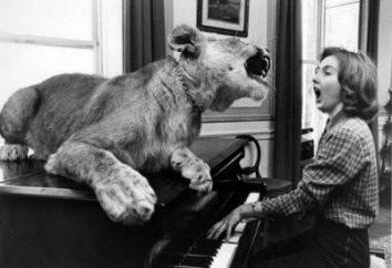 Jak czytać nuty: kilka porad dla początkujących muzyków