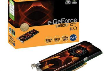 Nvidia Geforce 9600 GT: karta wideo