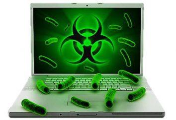 Particularités du virus informatique sont des signes?