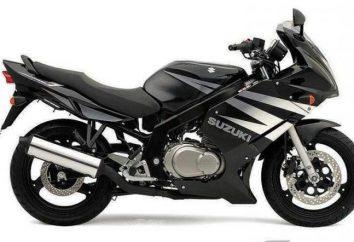 Suzuki GS500F – niezawodny wół roboczy