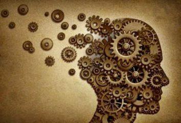 Urojenia i przewartościowane pomysłów: definicja. Syndrom przewartościowanych pomysłów
