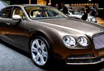 Les voitures de luxe, conduite par tout le monde se sent patron