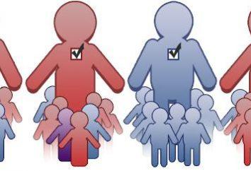 dzielnice większości. Okręg wyborczy. Większościowa ordynacja wyborcza