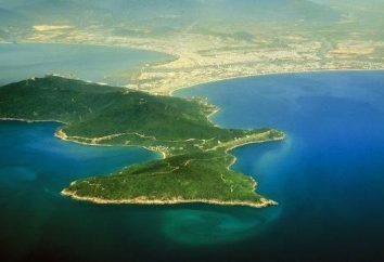 Che cosa è una penisola? Quale penisola si trova ad est: Hindustan o Indocina?