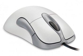 Jak działa mysz komputerową