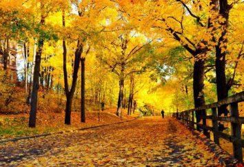 Una prueba interesante con respuestas acerca de otoño