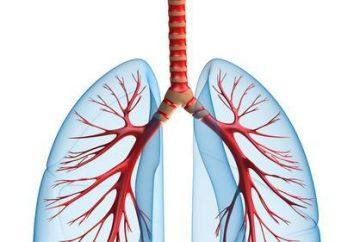 Przyczyny i objawy zapalenia płuc u dziecka