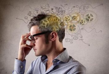 """Psycho-diagnostic method """"Hoch entwickelte Analogie"""": Beschreibung des Tests"""