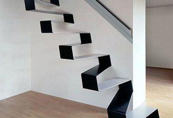 Qué es – una escalera de metal?