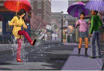 """Perchè """"The Sims 4"""" non si avvia: Possibili problemi e soluzioni"""