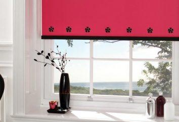 Jalousien für Kunststofffenster – stilvoll und originell