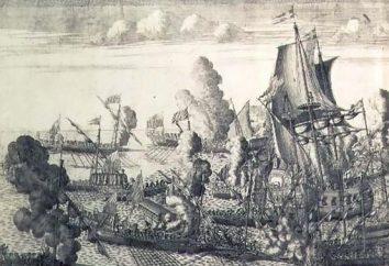 bataille navale au large du Cap Hanko (1714)