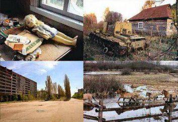 Chernobyl antes del accidente y después del accidente. alienación de la tierra