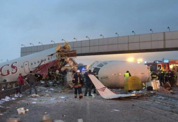 El colapso del cielo: un accidente de avión