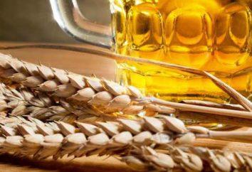 Piwne piwo w domu: gotowanie i przepis