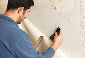Como seca gesso nas paredes?