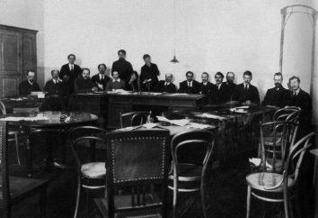 Rada Komisarzy Ludowych – pierwszy rząd Rosji Sowieckiej