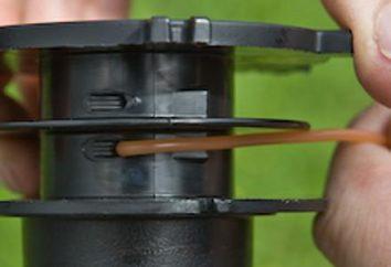 Istruzioni passo passo su come avvolgere la lenza sul trimmer bobina