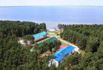 """Obóz """"Zubrenok"""" na Białorusi: Opinie"""