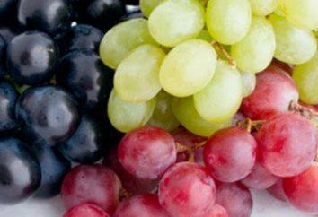 Interprétation des rêves: rêvé de raisins – pour quoi?
