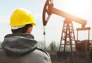 operador Commodity: descrição do trabalho