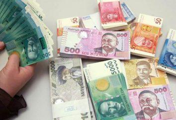 Kyrgyzstan Valuta: som – la prima unità monetaria della ex Unione Sovietica