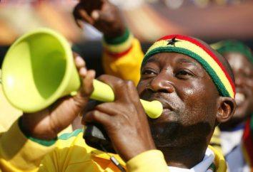 Vuvuzela: lo que es y donde se utiliza