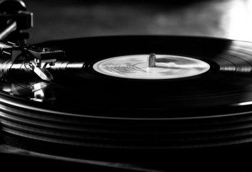 """Warum """"VKontakte"""" keine Musik spielen: Lösung"""