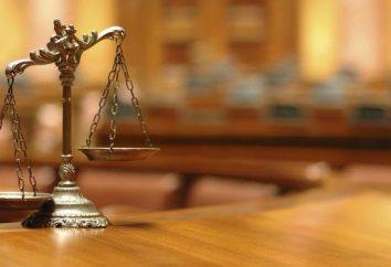 I rapporti giuridici: il concetto e caratteri. Tipologie e caratteristiche dei rapporti