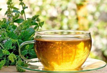 Las plantas medicinales cultivadas por el hombre, ayuda con angina de pecho. hierbas medicinales para la angina de pecho