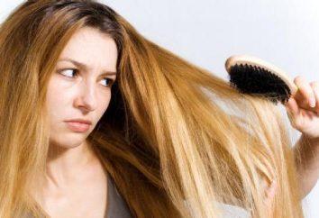 protección térmica para el cabello: opiniones. La mejor protección contra el calor para el cabello