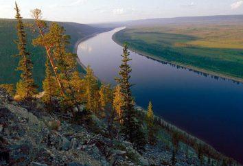 réserve Olekminsky: description. biote