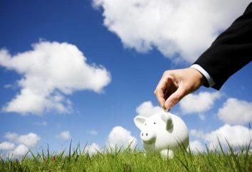 D'autres revenus – ou bien un mal nécessaire?