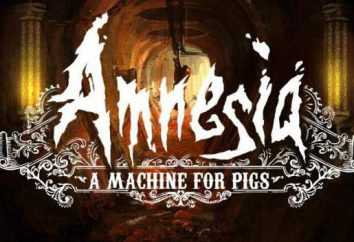 Das Spiel Amnesia: Eine Maschine für Schweine: passage