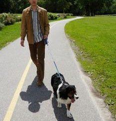 Guía del perro – un verdadero amigo y ayudante