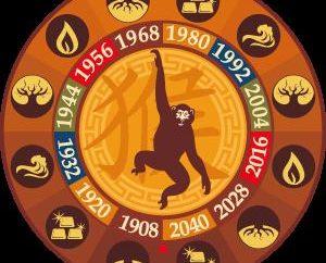 Co wyróżnia osoby urodzone w roku małpy?