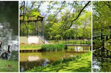 """""""Vondel"""" – um parque criado para a comunhão com a natureza"""