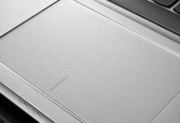 Qual é o touchpad: um rato, trackball ou trackpoint?
