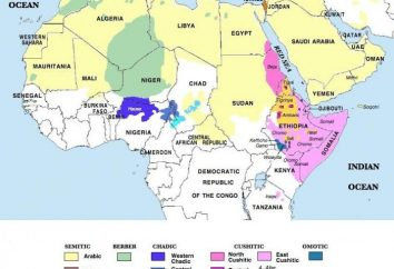 Jednym z głównych języków afrykańskich. Znani język afrykański