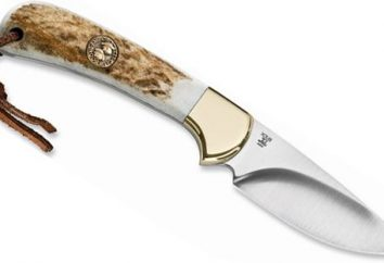 Couteaux Buck – qualité, hors du temps