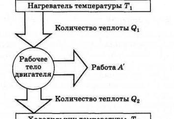 motores de calor: el principio de funcionamiento, el circuito de dispositivo