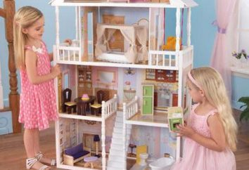 casas de muñecas Barbie – hacer realidad los sueños
