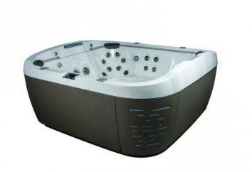Hot Tub Jacuzzi: como escolher?